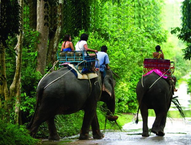 Travel Review: Ko Samui, The Island Of Plenty