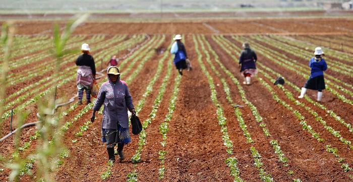 Wealthy Gulf Investors Begin To Eye Africa