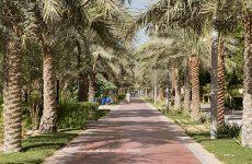 Dubai to establish world's first collective endowment park