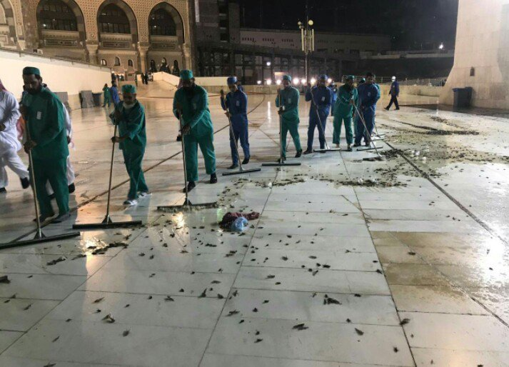 Makkah clears up swarms of black crickets at the Grand
