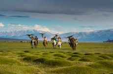 UAE citizens exempted from pre-entry visas to visit Mongolia