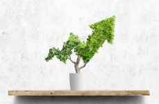 Why sustainable financing is the way ahead for the region