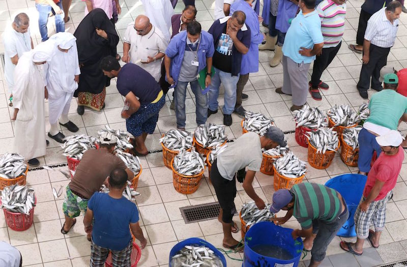Expats in Kuwait 'banned' from fish auctions to curb price