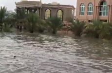 Video: Heavy rains hit parts of the UAE
