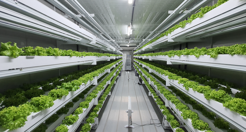 Smart Acres vertical farming