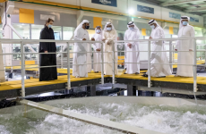 Sheikh Mohammed visits Fish Farm in Dubai, encourages domestic food production