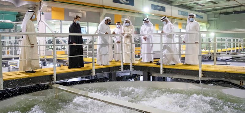 Sheikh Mohammed Fish Farm Dubai