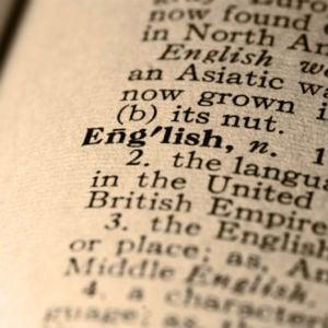 MENA English Speakers Earn More