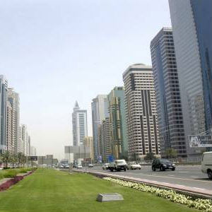 Dubai Will Support State Entities