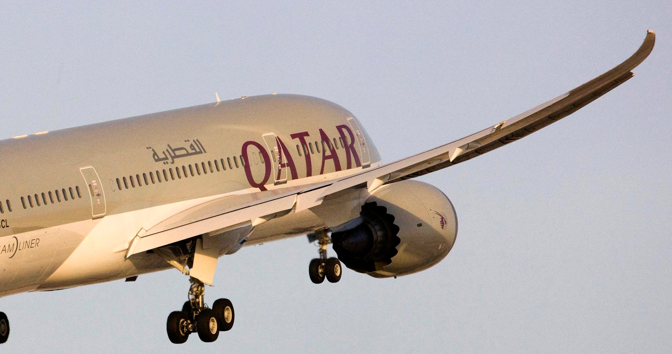 Qatar Airways CEO Says Company Fully Government Owned
