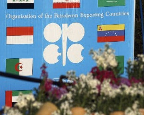OPEC head calls for cooperation to curb supply glut