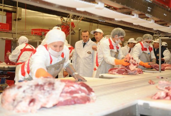 Investcorp Acquires Minority Stake In Turkish Food Producer
